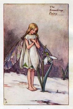 Snowdrop Flower Fairy » Flower Fairy Prints- Vintage Fairy Prints by Cicely Mary Barker for sale
