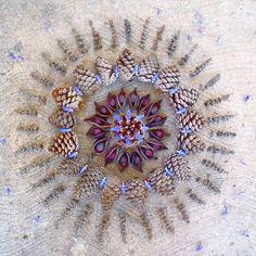 """Kathy Klein cria as mais complicadas e coloridas Danmalas que, em sânscrito, significa """"círculo de flores"""". Kathy utiliza cravos, rosas, margaridas e muitas outras espécies de flores, bem como sementes e folhas para executar estas lindas, delicadas e efêmeras obras de arte."""