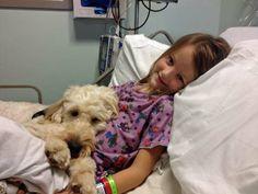 Un Perro Adorable Salva a Una Chica De Una Mortal Reacción Alérgica http://www.sitioviral.com/un-perro-adorable-salva-una-chica-de-una-mortal-reaccion-alergica/