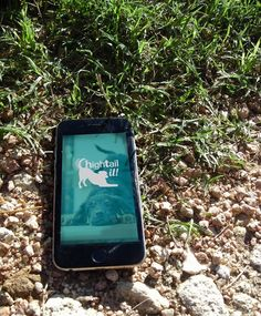 Hightail it! is a startup app designed with the no-kill shelter, Austin Pets Alive, in mind. Every year in America thousands of dogs are stray, lost, or abandoned and eventually put down. Over the …