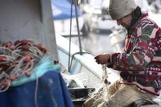 Buenas noticias para los pescadores más necesitados de México.  Leer más en: http://www.juancarloschouriomoreno.com.ve/post/142663090789/buenas-noticias-para-los-pescadores-más  #juanchourio #juancarloschourio #mexico #latinoamerica #pescaderia #caracas #venezuela #tumblr