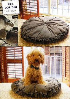 """DIY dog bed - this is brilliant, seriously... she uses her old clothes as the stuffing for the all-washable beds.  Polar fleece is about a dollar a yard at Joanne Fabric.... did I say """"brilliant""""?!?"""