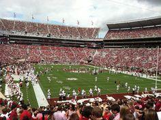 My hometown team!  Love me some Alabama Crimson Tide!!