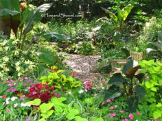 Tips for Designing A Naturalistic Garden
