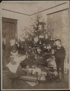 Christmas 1900 | Christmas tree around 1900