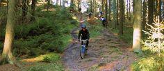 Mountainbiking in den Harburger Bergen in Hamburg
