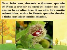 A castanha.Lili. Lily, Mobiles, Google, Children's Literature, Story Books, Seasons Of The Year, 4 Years, Activities, Authors