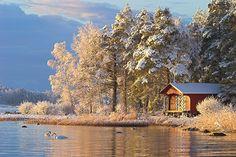 winterscape in Finland. Photo: Kari-Matti Kokko