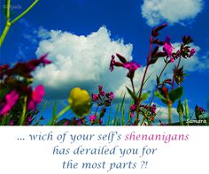 ... wich of your self's #shenanigans has derailed you for the most parts ?!