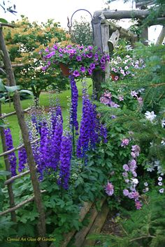Conrad Art Glass y jardines: Delphiniums