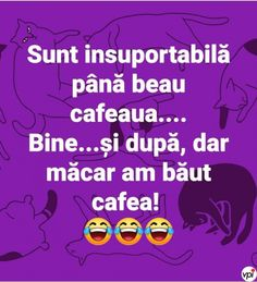Când sunt insuportabilă - Viral Pe Internet My Life, Funny Memes, Lol, Humor, Alphabet, Pictures, Photography, Dressing Rooms, Photos