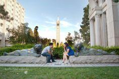 Katherine Azanza Photography #cal #berkeley #ucberkeley #bears #campanile