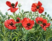 """Poppies Galore!"" Etsy Treasury: Poppy lovers will delight in this collection of lovely art by wonderful Etsy artisans. Enjoy! and Happy Shopping! Happy Sales!  Red Poppy Notecards by wandazuchowskischick"