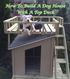 20 DIY Pet Craft Projects That Will Change The Life of Your Furry Friends homesthetics diy projects for pets Diy Pet, Diy 2019, Build A Dog House, House Dog, House Porch, Cozy House, Ideias Diy, Dog Bed, Dog Life