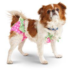 Smoochie Pooch Green & Pink Dot Dog Bikini at PETCO