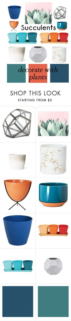 """""""Planters"""" by kmeowj ❤ liked on Polyvore featuring interior, interiors, interior design, home, home decor, interior decorating, NKUKU, Design Within Reach, Modern by Dwell Magazine and Jayson Home"""