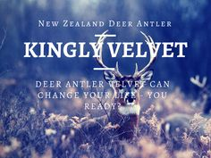 #DeerAntlerVelvet can change your life but are you ready for the change? Deer Antler is a truly amazing supplement that could help change your life. #KinglyVelvet #DeerAntlerSupplement http://www.kinglyvelvet.com/