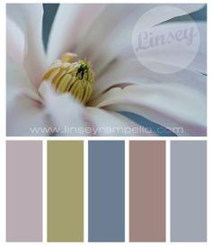 Magnolia www.linseyrampell...