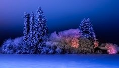 Winter by Timo HIRVONEN on 500px
