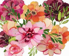 DEEP COVE FLOWERS:(2014) September Riches -  Luscious pinks and peaches By Catharine Campbell♥🌸♥
