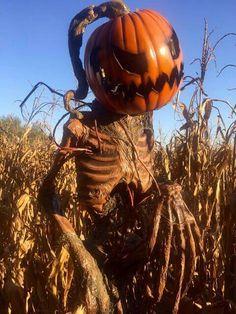 Pumpkin sentinel