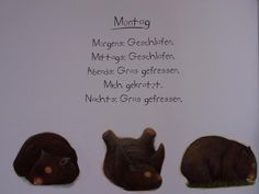 Diary of a Wombat: Monday