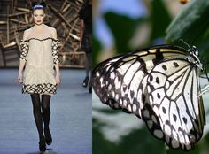 Trendinista: NY Fashion Week: Zac Posen's Butterflies Fashion Photo, Fashion Art, Editorial Fashion, High Fashion, Fashion Outfits, Womens Fashion, Ny Fashion Week, Fashion Portfolio, Fashion Design Sketches