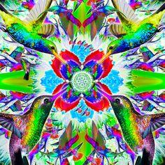 The Hummingbird in all its Glory Hummingbird, My Love, Painting, Animals, Art, Art Background, Animales, Animaux, Painting Art