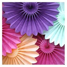 amazon com tissue paper fan collection 5 assorted fans pretty