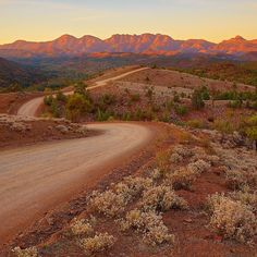 The Bunyeroo Valley road and its famous lookout offers impressive views of Razorback Ridge, the Northern end of Wilpena Pound. Road Trip Usa, Usa Roadtrip, Valley Road, Last Man, South Australia, Great Shots, Geology, Continents, Ranger