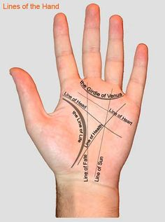 Palm reading guide :Do not let the fate unknown Auras, Hand Lines, Love Tarot, Tarot Reading, Book Of Shadows, Things To Know, Good To Know, Helpful Hints, Fun Facts