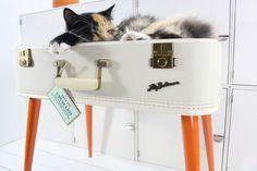 """Upcycled pet bed / Le """"upcycling"""", où l'art de créer des lits pour chats à partir d'objets vintage !"""