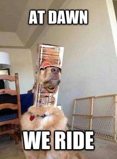 At dawn, we ride.
