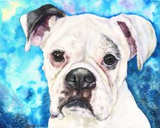 White Boxer watercolor print of the Original Painting art cute Sweet Dog Decor
