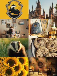 Mundo Harry Potter, Cute Harry Potter, Harry Potter Houses, Harry Potter Books, Harry Potter Universal, Harry Potter Fandom, Harry Potter World, Harry Potter Memes, Hogwarts