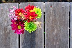 Flowers in mason jars. Cleopatra Photography