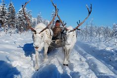 White reindeer and an Even herder in Oymyakon, Yakutia, Siberia/Russia by bolotbootur, via Flickr