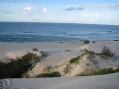 Fraser Island, near Waddy Point