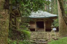 """The  Tsubaki-do (椿堂) deep into the forest of Enryaku-ji Temple (延暦寺) on Mt.Hieizan (比叡山) in Ōtsu, Japan. This hall is part of the Sai-tō (西塔, """"West Pagoda"""") and according to the brochure the name of Tsubaki-do (椿堂) was derived from an episode in which, when Shotoku Taishi visited Hieizan, he trust a camellia branch he was using as a cane into the ground, and this branch then took root and grew to cover the whole area."""