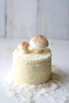 """""""sneeuwtaartje""""~ I think the recipe is in Dutch, but I can't resist this little cake!"""