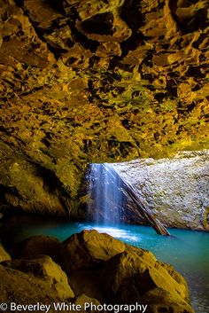 Natural Bridge Springbrook