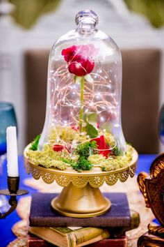 """This """"Beauty and the Beast"""" Wedding Photo Shoot Is Simply Enchanting"""
