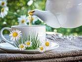 Jednou ze základních vlastností heřmánku je jeho pozitivní vliv na náš mozek a stres neboli celkové zklidnění organismu Tableware, Dinnerware, Tablewares, Dishes, Place Settings