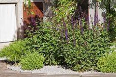 Risultati immagini per creare un piccolo giardino nel ...