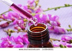 Bach flower remedies: how to use them to regain your ...