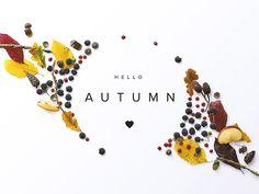 Hello Autumn by Román Jusdado #Design Popular #Dribbble #shots