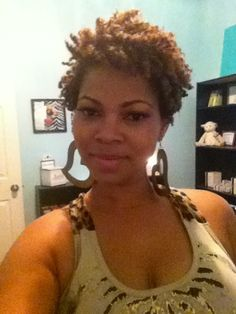 Astonishing Pinterest Two Strand Twist Out Two Strand Twists Twist Short Hairstyles For Black Women Fulllsitofus