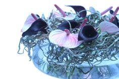Pim van den Akker - bowl of orchid roots, with blooms- artistic.