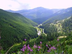 Wallpaper of Pasul Prislop carpathian mountains Romania most beautiful european landscapes for fans of Romania 35164730 Beautiful Places To Visit, Wonderful Places, Visit Romania, Carpathian Mountains, Bucharest Romania, Famous Castles, Backpacking, Places To Go, Scenery