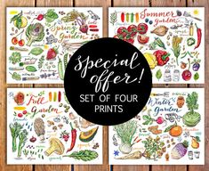 Garden prints. Special offer. Four prints for the price of three. Gardening. Seasons. Spring. Summer. Fall. Winter. Food art. Illustration.